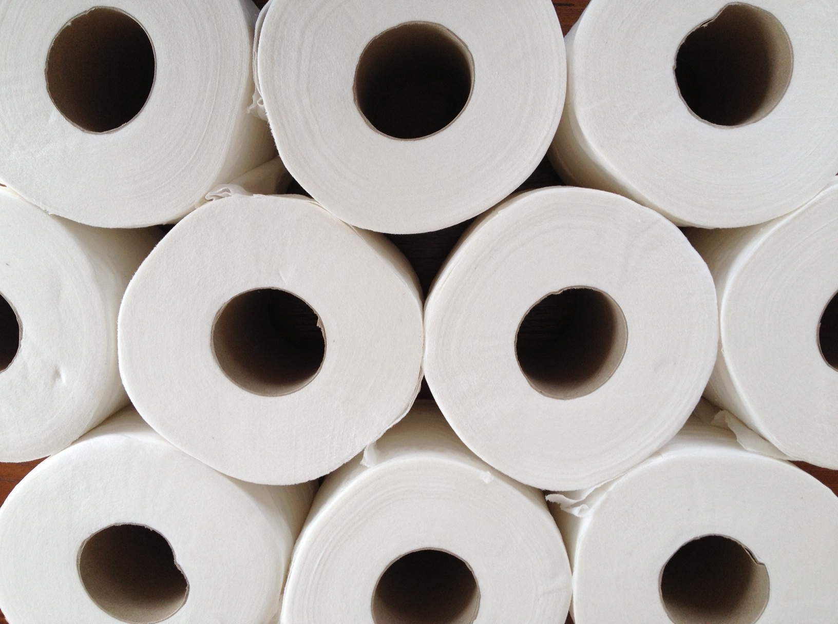 10 commandments of toilet roll   10thingsby.com